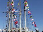 reklamni-materijal-swa-tim-izrada-zastava-brodske-zastave-zastave-za-brodove-brosdske-zastave