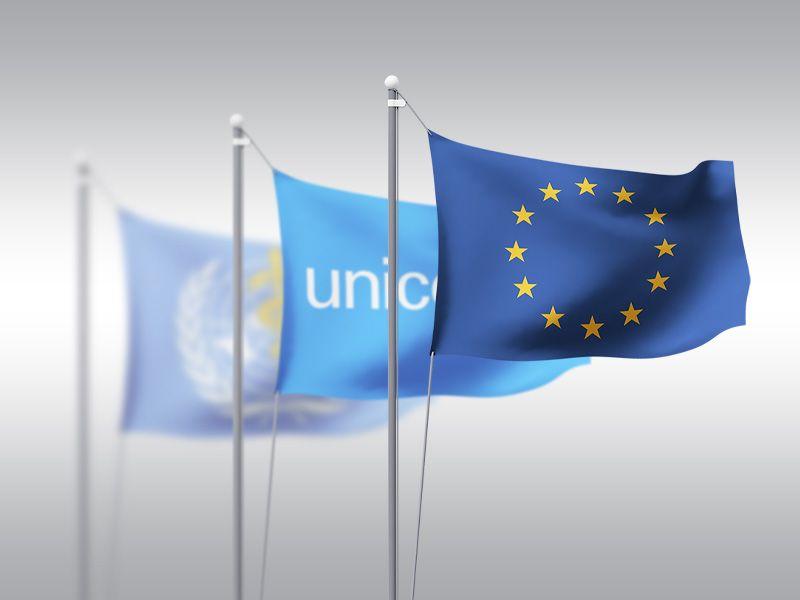 zastave organizacija